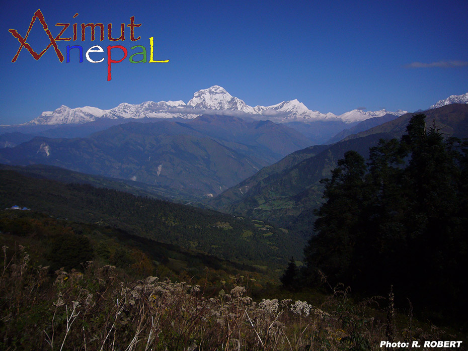 Click to enlarge image Dhaulagiri_from_Gurung_Hill.JPG